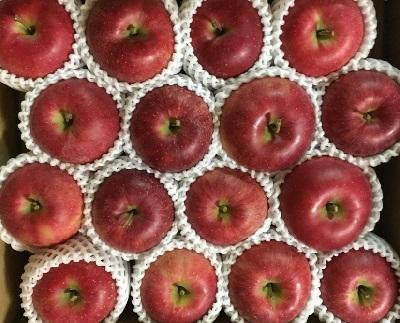 一日1個のリンゴを目標に!