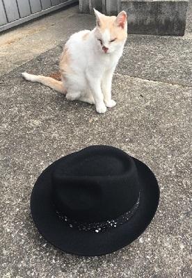 帽子の紹介をするオビちゃん!?