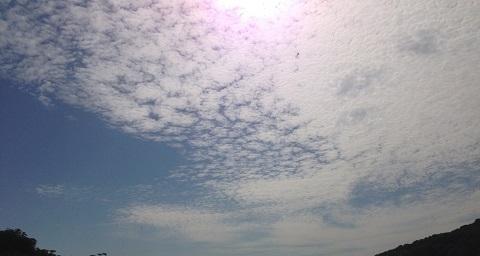 ホニャララと秋の空